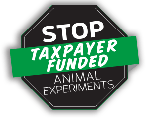 White Coat Waste Project – STOP Taxpayer-Funded Animal Experiment